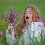 allergies and indoor air quality - Houston